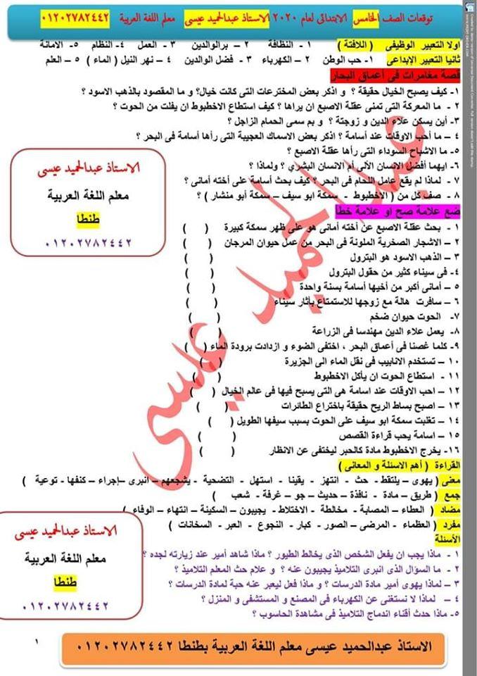 توقعات امتحان اللغة العربية الصف الرابع و الخامس و السادس الابتدائي ترم أول 2020 أ/ عبد الحميد عيسي 9
