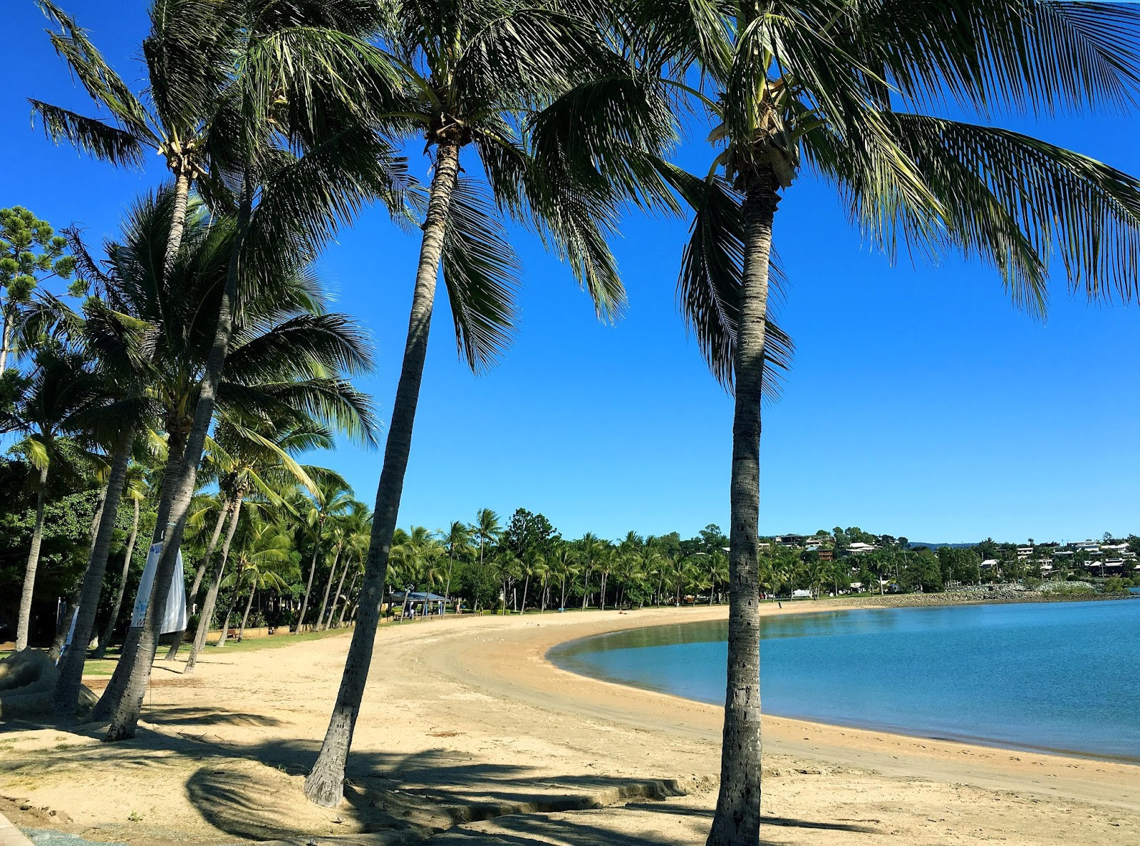 Everybody has heard of the beauty of Whitsundays, the sailing and endless activities waiting for you in Airlie Beach, but what are they leaving out? Read more from this article.
