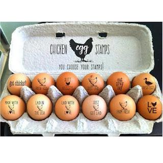 memilih telur segar yang baik dan benar