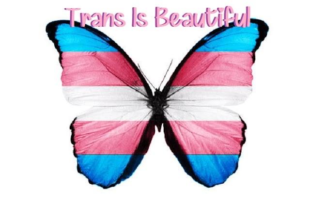 Simply Beautiful Samantha-Transgender Articles