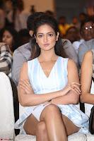 Shanvi Looks super cute in Small Mini Dress at IIFA Utsavam Awards press meet 27th March 2017 59.JPG