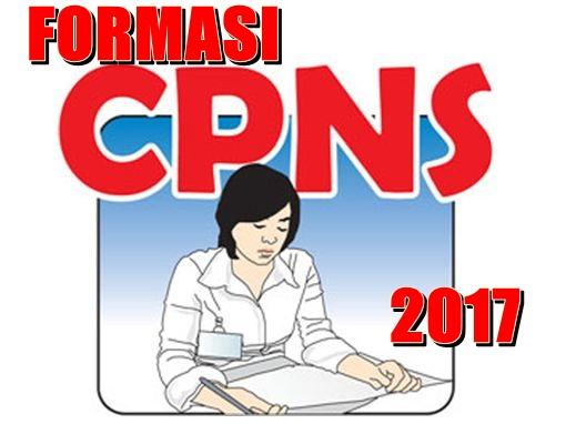 Formasi Yang Dibutuhkan Pada Rekrutmen CPNS Tahun 2017