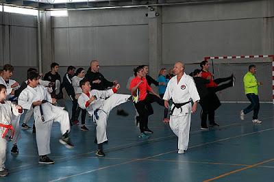 Karate Aranjuez Seseña