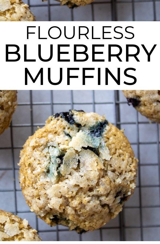 Gluten Free, Dairy Free Blueberry Muffins