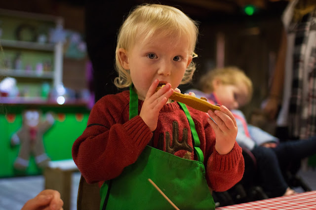 A 3 year old girl eating a gingerbread man she has just decorated on the Father Christmas Experience in essex