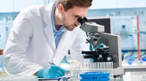 Innovatív gyógyszergyártók: több mint 7000 készítmény fejlesztése zajlik