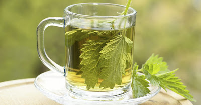 How to Make Nettle Leaf Tea To Help Reduce Blood Sugar Levels