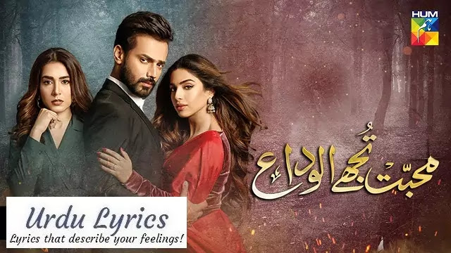 Mohabbat Tujhe Alvida OST Lyrics - Sahir Ali Bagga & Afshan Fawad
