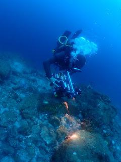 2021年9月6日の柏島ダイビング