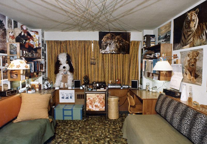 Neon Animal Print Wallpaper Vintage Dorm Room Always Erin