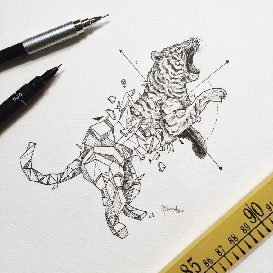 06-Tiger-Kerby-Rosanes-Geometry-Coupled-with-Detailed-Drawings-of-Animals-www-designstack-co