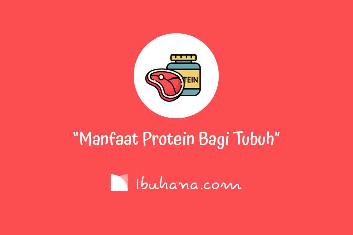 manfaat protein bagi tubuh agar tetap sehat