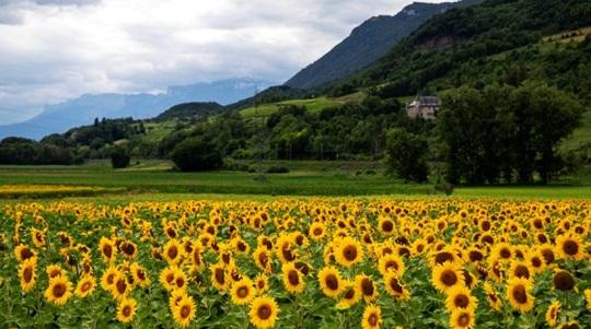 What does Savoie mean Where is Savoie When to go to Savoie What is the Savoie population