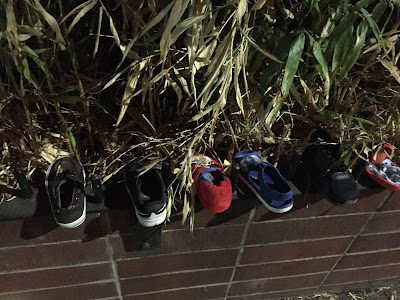 Assorted children's shoes lined up on a brick planter with plants in the background.