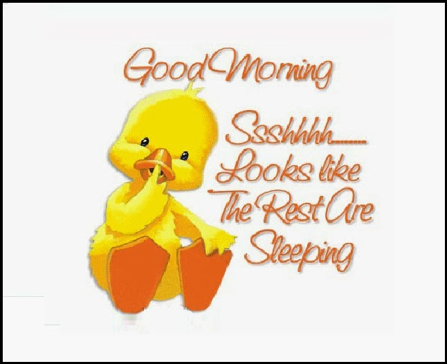 Good Morning Funny Messages: Funny Good Morning Wishes English SMS, Messages