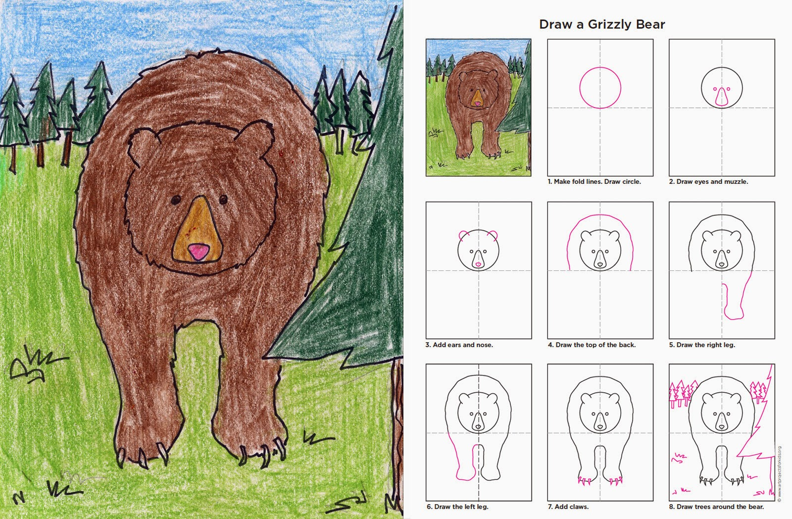 Brown Bear Diagram Parts Of A Sailing Ship Grizzly Face Drawing