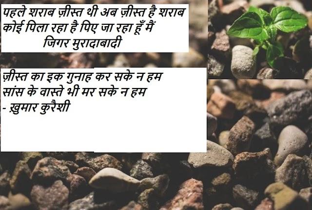Jeest Shayari Collection हिंदी शायरी एच  'ज़ीस्त' पर कहे शायरों
