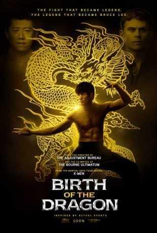 Birth of the Dragon 2016 BRRip 720p Dual Audio In Hindi English
