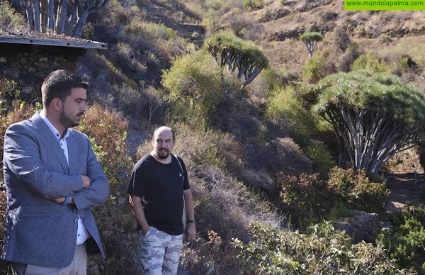 El Cabildo de La Palma lleva la electricidad a la población de Buracas