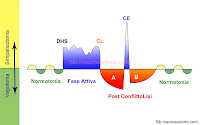 Curva bifasica 5 Leggi Biologiche