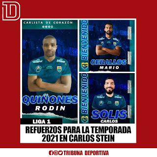 EQUIPO CARLOS STEIN