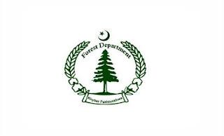Forest Department Mansehra Wildlife Division Jobs 2021 via ITA