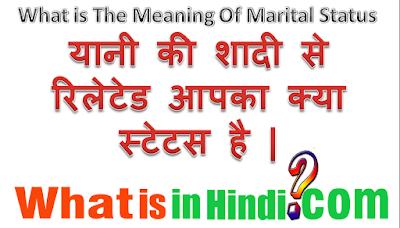 Marital status ka matlab kya hota hai