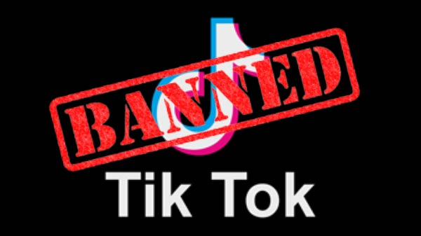 TikTok Ban: Madras High Court Request To Ban TikTok Video