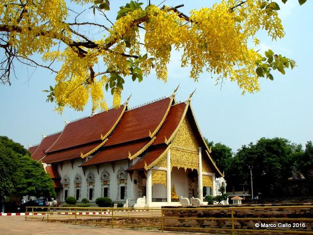 TEMPLO WAT INTHAKHIN PILLAR VIHARA Y WAT CHEDI LUANG. Chiang Mai, Thailand
