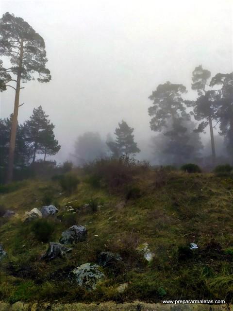 niebla de camino al puerto de Navacerrada