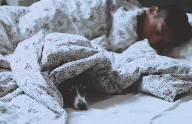 Sleep patterns also influence our health: having regular hours and going to bed early helps us to be healthier