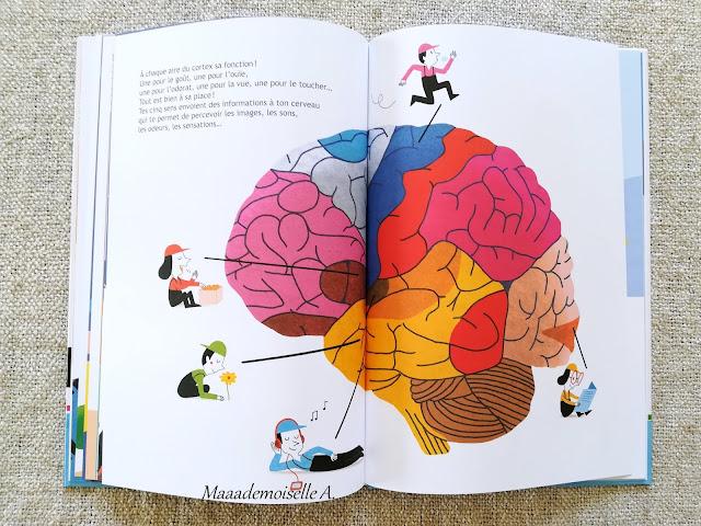    100% connecté : Le cerveau et les neurones (Présentation & Avis)(Chut, les enfants lisent #114)