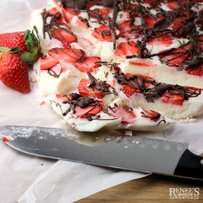 Frozen Strawberry Chocolate Yogurt Bark | Renee's Kitchen Adventures