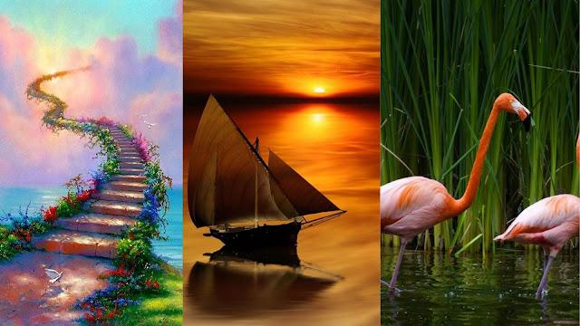 Top 50 Unique & Beautiful 3D Nature Wallpaper Download Free