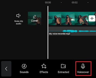 select the voiceover option