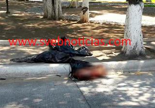 Arrojan descuartizado frente al Ayuntamiento de Zihuatanejo Guerrero