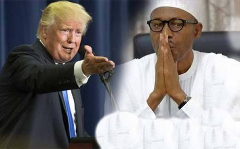 US Legal Advisor Berates Buhari Over INEC Problems, Tells Trump What To Do In Nigeria