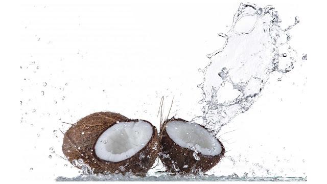 gambar wallpaper buah kelapa