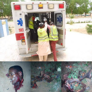 Mass Suicide Bomb Attempt Stopped by Nigerian Dogs (Graphic Photos)