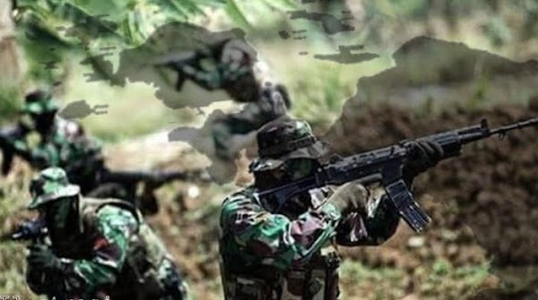 Kontak Tembak TNI vs KKB di Hitadipa Papua, 1 Orang Tewas