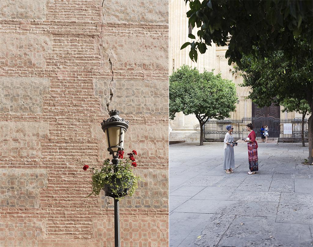 Patio de los naranjos de Málaga