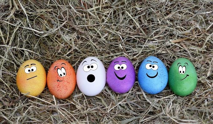 Ovos De Páscoa Engraçado