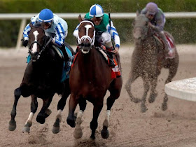US horse racing tips