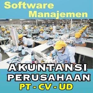 Software Akunting Perusahaan, Manajemen PT, CV, UD
