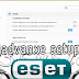 Advanced Configuration and Protection Options in ESET  Antivirus Business Edition