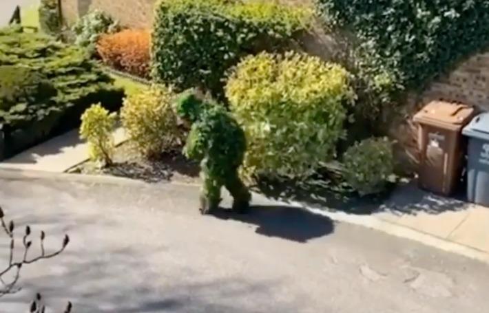 Se vistió de arbusto para poder salir de su casa durante la cuarentena sin ser visto