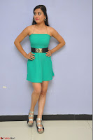 Shipra Gaur in a green tight small dress at Baby movie Audio Launch 20th April 2017 025.JPG