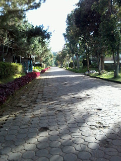 Villa Istana Bunga Lembang Disewakan
