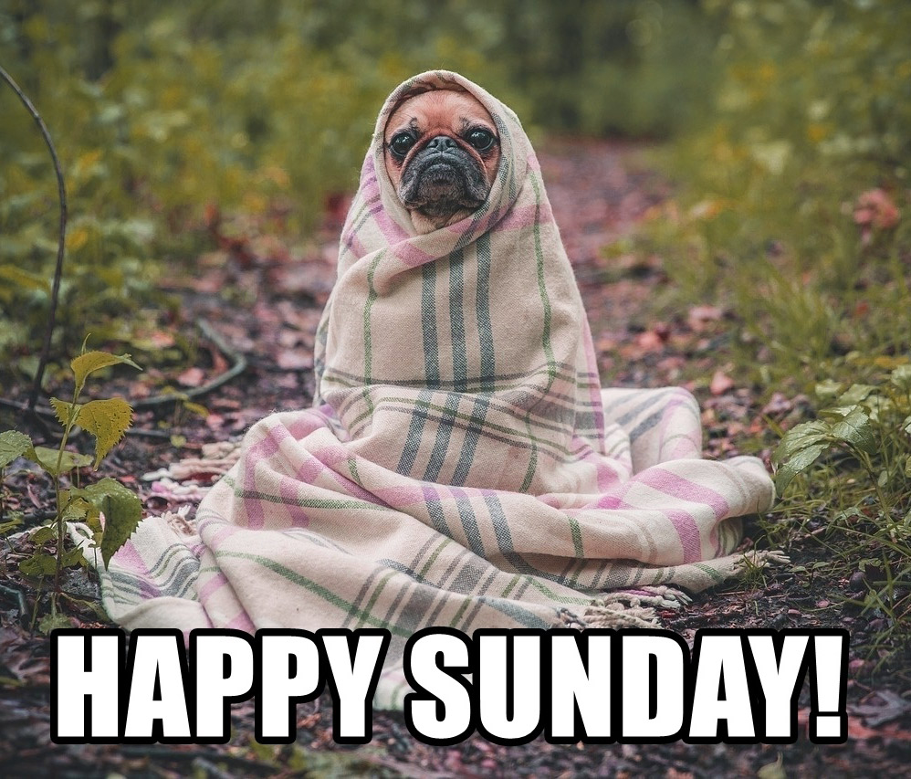 Funny%2BSunday%2BImages%2BHD%2B6