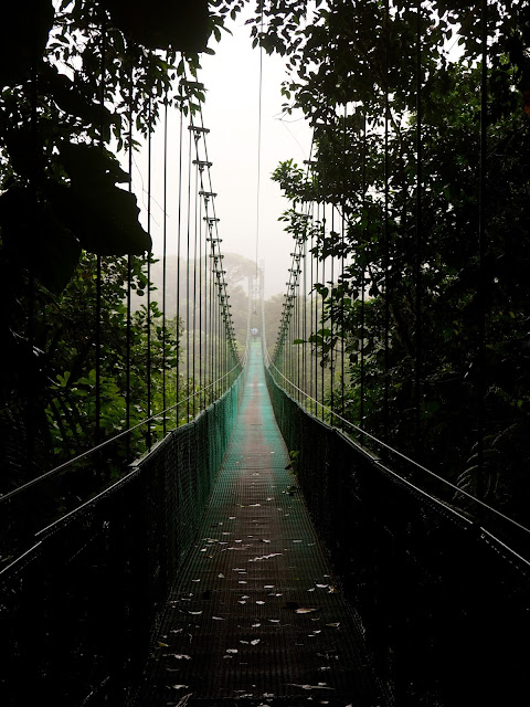 Hanging bridges in the Cloud Forest, Monteverde, Costa Rica